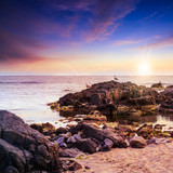 seagulls sit on big  boulders near the sea watching sunset