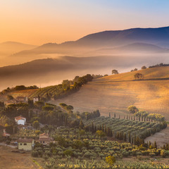 Morning Fog over Tuscany Landscape, Italy