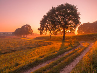 Orange and Pink Sunrise over Rural Landscape near Nijmegen
