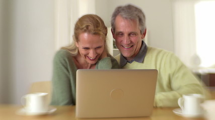 Sweet senior couple using laptop at desk