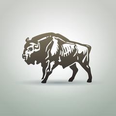 Belarusian aurochs