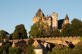 Castle of Montfort, Dordogne (France)