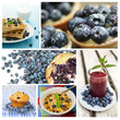 Blueberry dessert collage