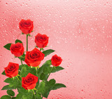 Bouquet of red roses on the background of a window with raindrop