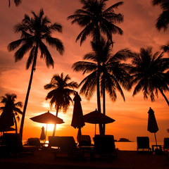 beautiful beach resort with palm trees at sunset