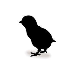 Form contour chick  icon logo