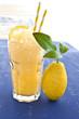 canvas print picture - Hausgemachte Granita von frischen Zitronen