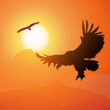 Square cartoon illustration of soaring eagle and sunset.
