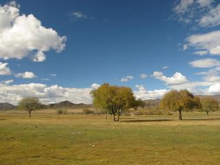 Mongolia - landscape near Selenge river