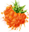 Cloudberry  made of colorful splashes on white background