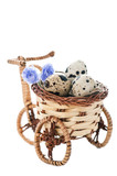 Bicycle pot with quail eggs