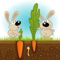 hares big and small carrots - vector illustration