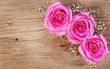 Pink Roses and Gypsophila on Wooden Background