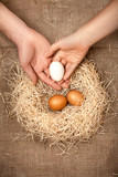 men and women hand putting white egg in the nest with brown eggs