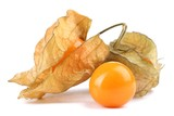 Physalis isolated on white
