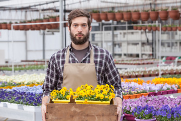 Young male worker carrying small potted flower