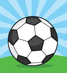 Soccer Ball On Grass.  Illustration