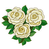White roses with leaves isolated on white background.