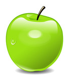 Vector green Apple
