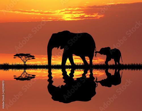 canvas print picture elephant with baby elephant
