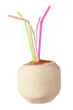 Young Coconut with Straws