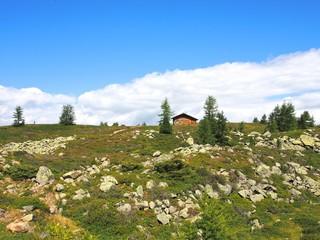 ヨーロッパ、アルプスの大草原