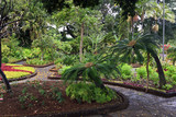 Tropical Garden on Madeira Island