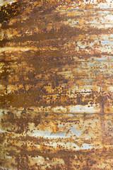 Stripe rust background.