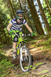 canvas print picture - Downhill im Wald