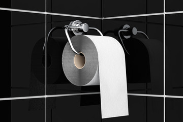 Toilet paper on chrome holder