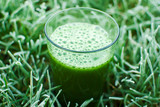 healthy green detox juice poster