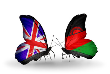 Two butterflies with flags UK and Malawi