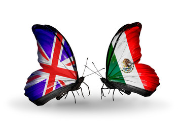 Two butterflies with flags UK and Mexico