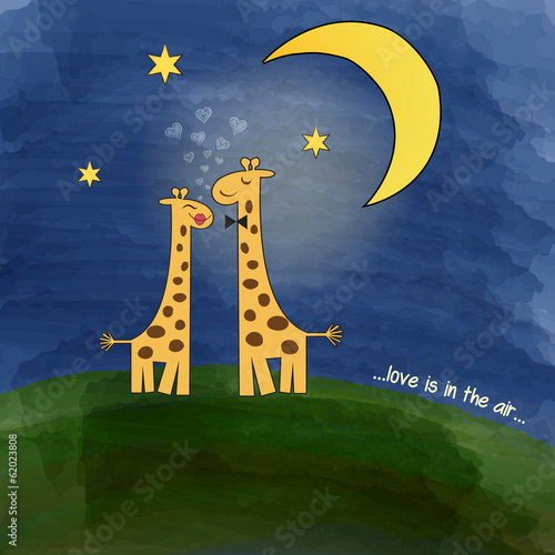 giraffes in love at night on a meadow