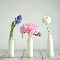 Bulbous flowers: Hyacinth,Hydrangea,Ranunculus