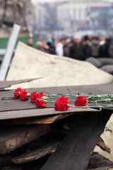 Flowers in memory of murdered on Euromaidan