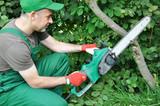 Gärtner sägt Ast mit Motorsäge