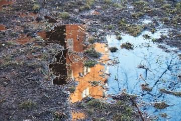 House reflection in the spring puddle