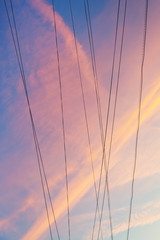 electrical wires with pink sunset clouds