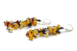 Brown Baltic amber earrings isolated