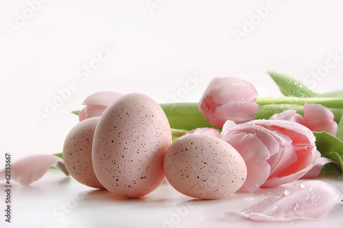 Pink tulips with water droplets and eggs