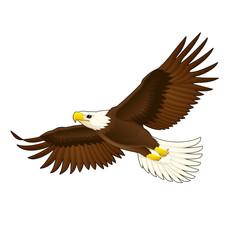 American eagle.