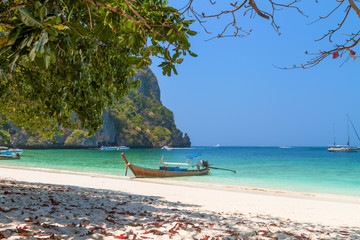 Monkey Bay, Koh PhiPhi Island