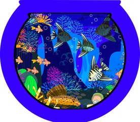 Marine aquarium with saltwater fish
