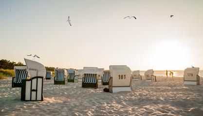 Strandkörbe, Möwen und Familie am Strand