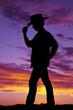 Silhouette man cowboy hat touch rim