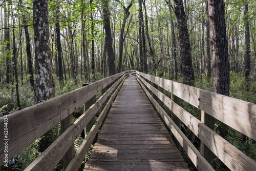 Long Boardwalk At Swamp Slough Preserve