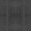 background of  black snake skin