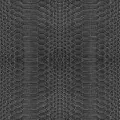 background of  black snake skin
