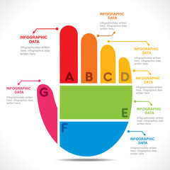creative colorful hand info-graphics design vector